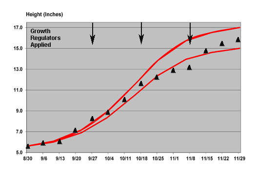 2011 growth chart for Prestige Red poinsettia