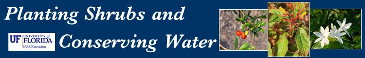 GARDENING: Planting Shrubs & Conserving Water ……..
