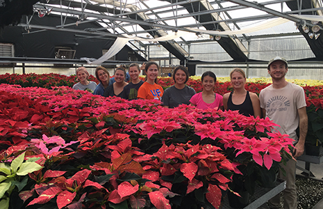 Environmental Horticulture Club with Poinsettias