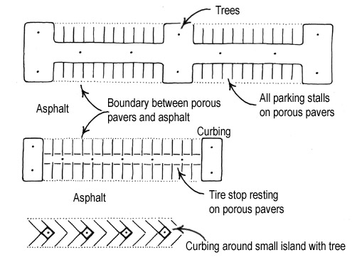 Special Planting Situations Urban Design Landscape