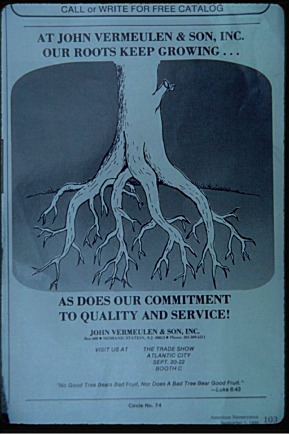 Roots Landscape Plants Edward F Gilman Uf Ifas