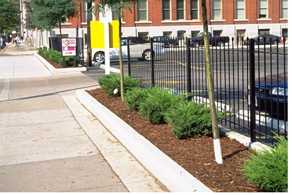Parking lots - Urban Design - Landscape plants - Edward F ...